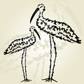 Decorative storks hand drawn for your design Royalty Free Stock Photography