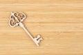 Decorative vintage key Royalty Free Stock Photo