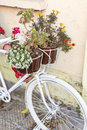 Decorative white Bicycle with flowers Royalty Free Stock Photo