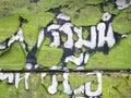 Decrepit old wood background texture Stock Images
