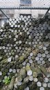 Deed pins Royalty Free Stock Photo