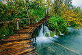 Deep forest stream with crystal clear water with pathway. Plitvice lakes Royalty Free Stock Photo