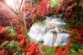 Deep Forest Waterfall In Autum...