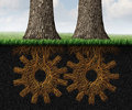 Deep partnership business concept and financial cooperation symbol as two growing trees with underground roots shaped as gears and Stock Image