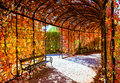 Deep red plant tunnel Royalty Free Stock Photo