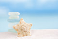 Deepwater rare starfish with sea glass ocean Royalty Free Stock Photo