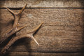 Deer antlers on wooden surface high angle view of against rustic background with copy space Stock Photos