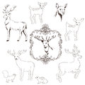 Deer christmas set for design and scrapbook in Stock Images