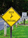 Deer  Crossing Sign Stock Image