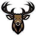 Deer head mascot Royalty Free Stock Photo