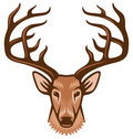 Deer head symbol sign illustration Royalty Free Stock Photos