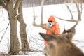Deer hunter taking aim at a whitetail deer Royalty Free Stock Photo