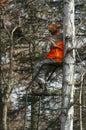 Deer Hunter Royalty Free Stock Photo