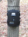 Deer hunting trail camera Royalty Free Stock Images