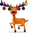 Deer Rudolf
