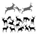 Deer silhouettes including fawn doe bucks and stags in various poses includes family group of stag doe and fawn running and Royalty Free Stock Images