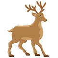 Deer vector illustration Stock Photography
