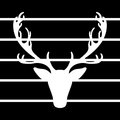 Deer vector illustration elk silhouette black lines background