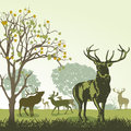 Deer and wildlife an illustration of in the autumn Royalty Free Stock Photography
