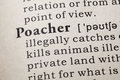 Definition of poacher Royalty Free Stock Photo