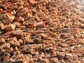 Deforestation- logs of chopped wood piled for sale Stock Image