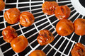 Dehydrated cherry tomatoes on food dehydrator tray Stock Photography