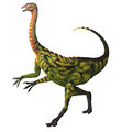 Deincheirus on white was a large theropod carnivorous dinosaur of the cretaceous age Stock Photos