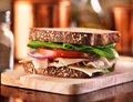 Deli meat sandwich with turkey shot selective focus Royalty Free Stock Image