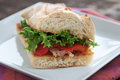 Deli Sandwich Stock Images