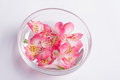 stock image of  Delicate freesia in a bowl of water.