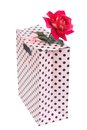 Delicate pink rose in gift paper bag isolated on white background Stock Photography