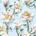 Delicate seamless pattern with magnolia flowers on a blue background. Vector illustration.
