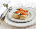 Delicious appetizer with salmon Royalty Free Stock Image