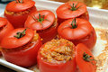 Delicious baked stuffed tomatoes Royalty Free Stock Photo