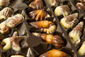 Delicious Belgian pralines in the form of seashells Royalty Free Stock Photo