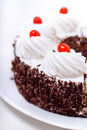 Delicious cake with whipped cream Stock Images