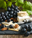 Delicious cheese crackers appetizer with grapes and pecans Royalty Free Stock Photo