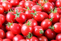 Delicious cherry tomatoes closeup of the fresh fruit Royalty Free Stock Image