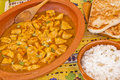 Delicious chicken curry with rice and pitta bread casserole of cardamon Stock Photography