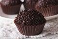 Delicious chocolate candy Brigadeiro macro. horizontal Royalty Free Stock Photo