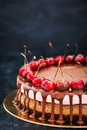 Delicious chocolate and cherry cheesecake dessert decorated with Royalty Free Stock Photo