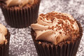 Delicious chocolate cupcakes with and sparkles on the top and icing sugar around them Royalty Free Stock Image