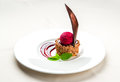 Delicious chocolate dessert with cherry ice cream on a plate Stock Image