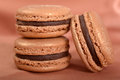 Delicious chocolate macaron cookies three stacked together with a shallow depth of field Royalty Free Stock Image