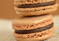 Delicious chocolate macaron cookies two stacked together with a shallow depth of field Stock Photos