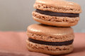 Delicious chocolate macaron cookies two stacked together with a shallow depth of field Stock Photography