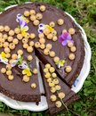 Delicious chocolate tart with berries on the white Royalty Free Stock Photo