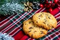 Delicious cookies with chocolate crumbs. Tasty dessert food in close up. Chocolate cookies served on tray, decorated fir branches