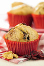 Delicious cranberry oatmeal muffins selective focus Royalty Free Stock Photos