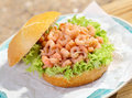 Delicious crusty roll with shrimp filling fresh crisp frilly lettuce topped served on a napkin on a plate for a gourmet Royalty Free Stock Images
